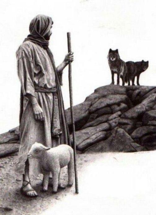 good-shepherd-vs-wolves