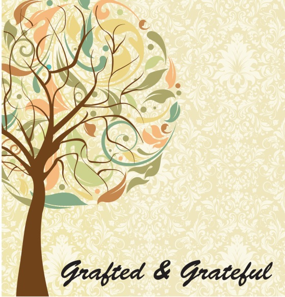 grafted and grateful copy